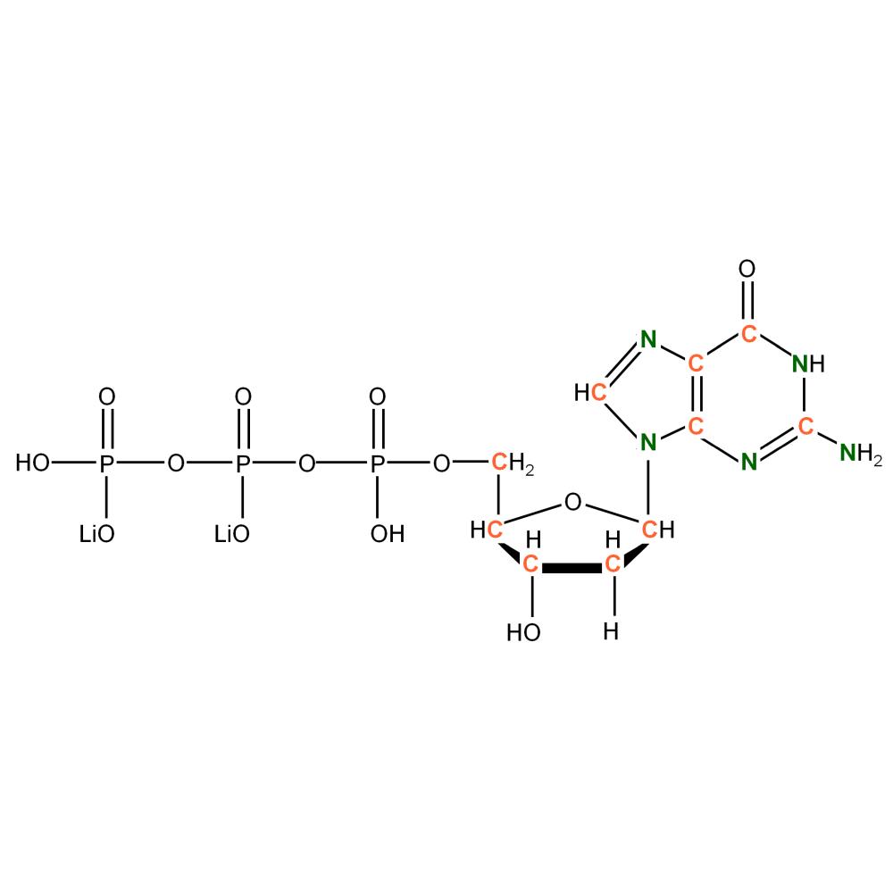 13C15N-labeled dGTP