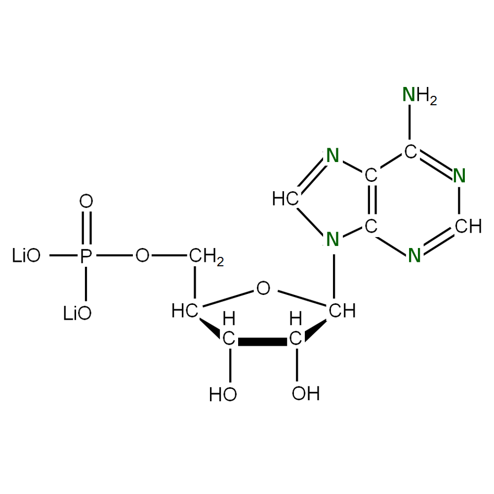 15N-labeled rAMP