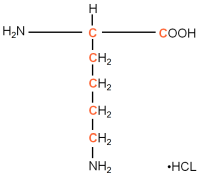 13C-labeled L-Lysine HCl