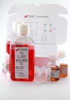 SILAC DMEM Lysine(6)  Arginine (6)  Kit