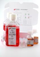 SILAC DMEM Lysine(4)  Arginine(10)  Kit